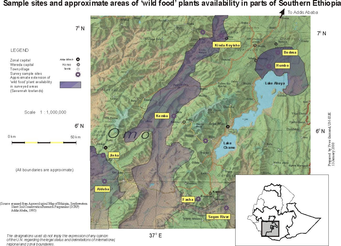 UNDP EMERGENCIES UNIT FOR ETHIOPIA